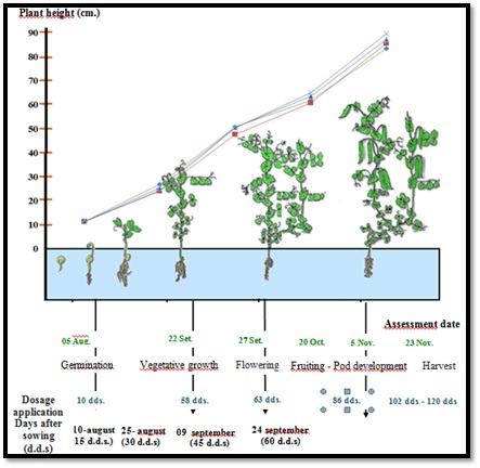 Figure 2: Date of evaluation and application of silicon doses